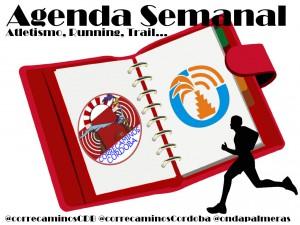 agendaSemanal